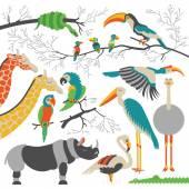 African animals sim 5