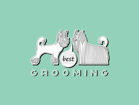 Pet grooming 1