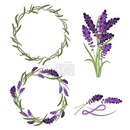 Provence lavender flower bouquet set.