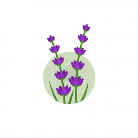 Illustration for Lavender flowers in the round shape logo - Royalty Free Image