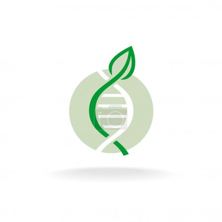Illustration for Plant nature genetic engineering symbol. Green leaf with stalk and DNA elements logo. - Royalty Free Image
