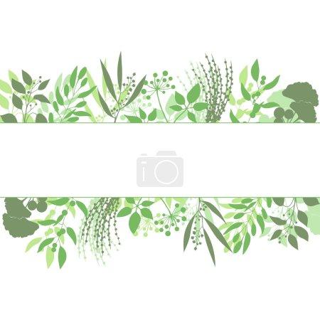 Illustration pour Cadre rectangle vert avec collection de plantes et d'herbes. Silhouette de branches isolées sur fond blanc. Illustration vectorielle - image libre de droit