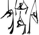 Aerial silk dancer in silhouette