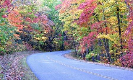 Autumn colors on the Blue Ridge Parkway near Asheville, North Carolina
