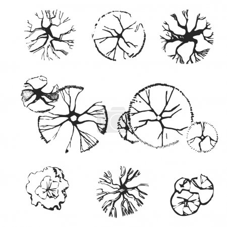 Illustration for Hand drawn set of top view trees. Use for landscape design - Royalty Free Image