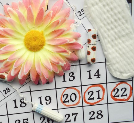 Menstruation calendar with cotton tampons, orange gerbera and sanitary pads