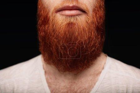 Closeup of long red beard and mustache man.