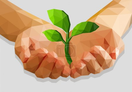 cupped hands keep green plant isolated ecology polygonal low pol