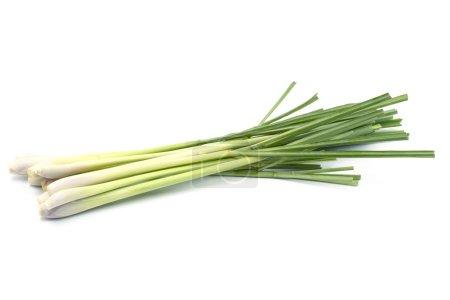 Fresh Lemongrass (citronella) isolated on white background, with