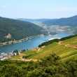 Amazing view over the river Rhine from the top of ...