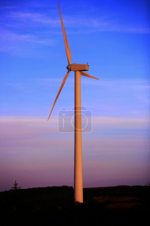 Photo for Single Windmill at Dawn illuminated by sunlight - Royalty Free Image
