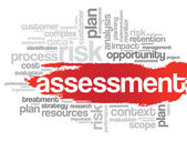 Assessment word tag cloud