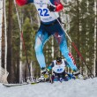 Постер, плакат: Group of skiers male athletes up mountain