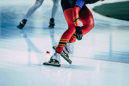 legs women athletes skater