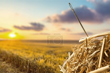 Photo for Needle in  haystack on background - Royalty Free Image