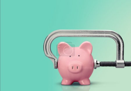 Pink piggy bank and clamp