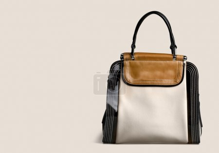 women bag isolated
