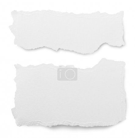 paper isolated on white background
