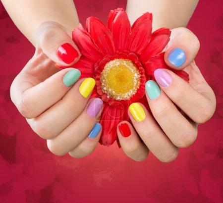 Photo pour Mains de femme brillante manucure et fleur, isolé - image libre de droit