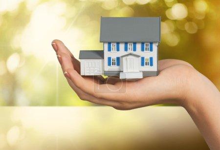 House, Domestic Life, Human Hand.