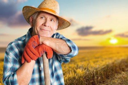 Gardening, Senior Adult, Men.