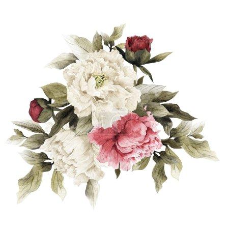 Watercolor Bouquet of peonies,