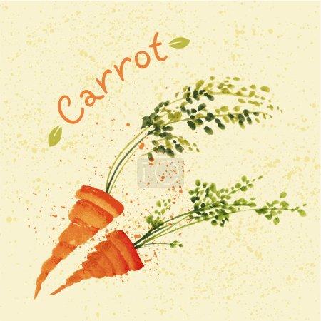 Illustration pour Carottes à l'aquarelle dessinées à la main avec spray, tache et tache - image libre de droit
