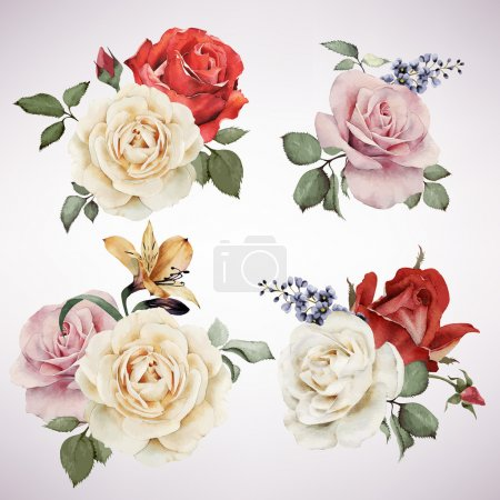 Set of vector bouquets of roses, watercolor, can be used as gree