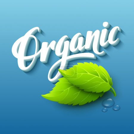 Illustration for Realistic organic logo with leaves. Vector illustration EPS10 - Royalty Free Image