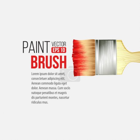 Illustration for Paint Brushes isolated on white. Vector illustration EPS 10 - Royalty Free Image