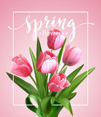 Spring text with  tulip flower Vector illustration