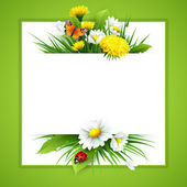 Fresh spring background with grass dandelions and daisies Vector