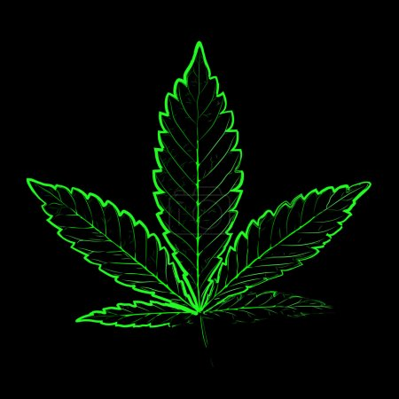 Illustration for X-Rays. Marijuana leaf in abstract style - Royalty Free Image