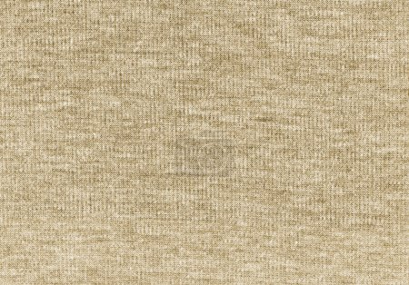 Beige knitted natural wool texture background. Knitted pattern