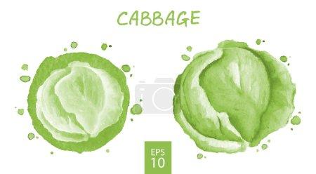 Vegetables set - cabbage