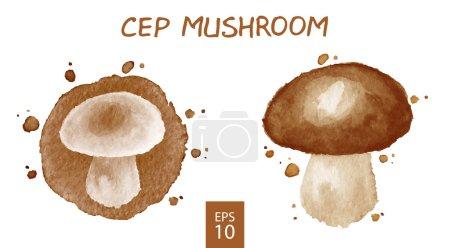 Vegetables set - mushroom