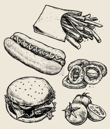 Vector hand drawn food emblems and illustrations. Fast Food set. Hamburger, french fries, tomatoes, hot dog.
