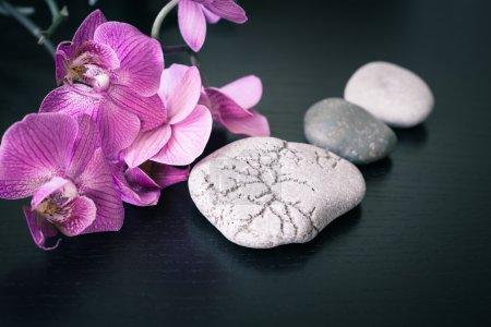 Photo pour Spa massage pierres et orchidées fleurs comme fond - image libre de droit
