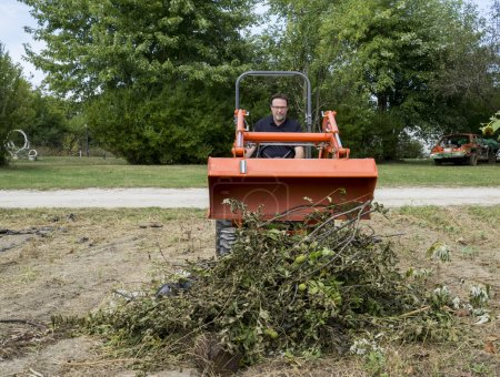 Tree Trimmer Dumping Limbs Into Pile