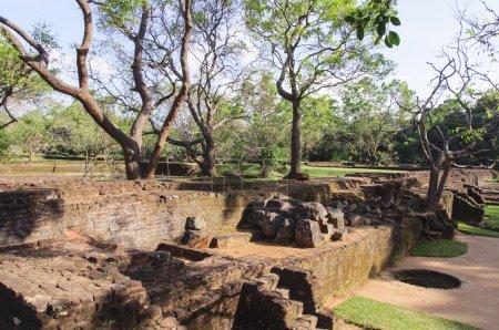 Park near the Sigiriya rock