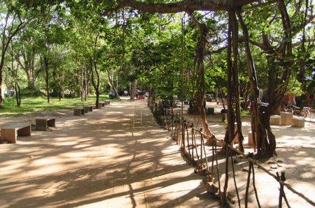 The gardens of Sigiriya Sri