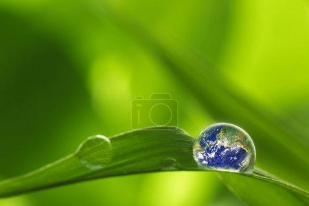 grün, horizontale, close-up, Makro, Konzepte, Ideen - B108501806
