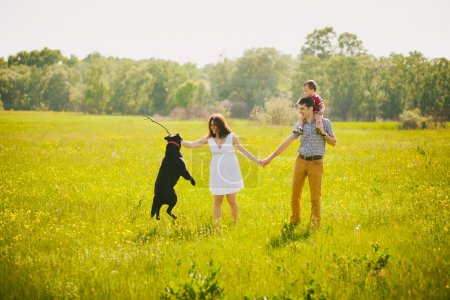 Foto de Familia feliz jugando con perro labrador negro en la pradera de verano. Padre, madre, hijo cogido de la mano - Imagen libre de derechos