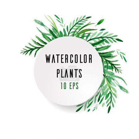 Illustration for Cover with watercolor plants with place for text on white background - Royalty Free Image