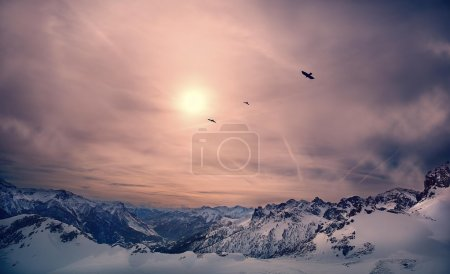 Birds migrating over steep mountains