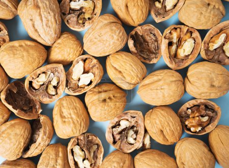 Walnuts whole in their skins, chopped on blue background