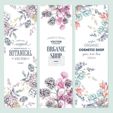 Illustration pour Collection floral banner. Boutique bio. Illustration vectorielle - image libre de droit