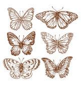Farfalle dellannata Texture