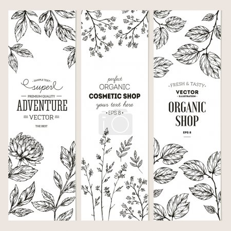 Illustration for Botanical banner collection. Organic cosmetic. Vector illustration - Royalty Free Image