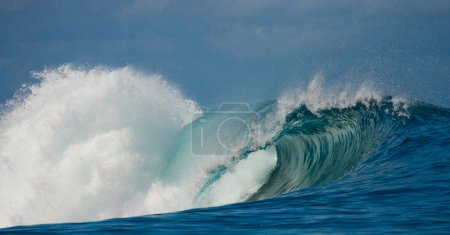 Large Powerful Wave